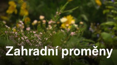 Zahradní proměny (15)