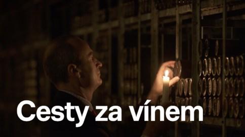 Cesty za vínem (19)